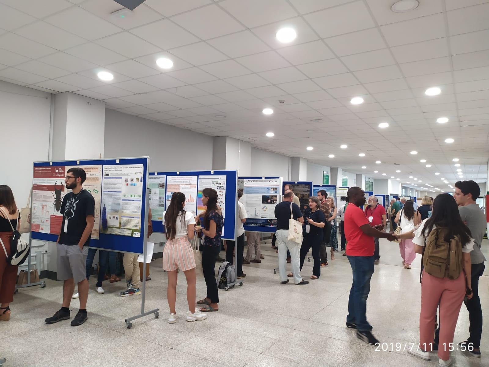 Posters en el XVIII Congreso Ibérico de Entomologia desde el stand del COBCM